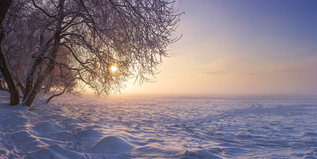 Winter Landscape In The Evening At Sunset. Snow, Frost In Januar